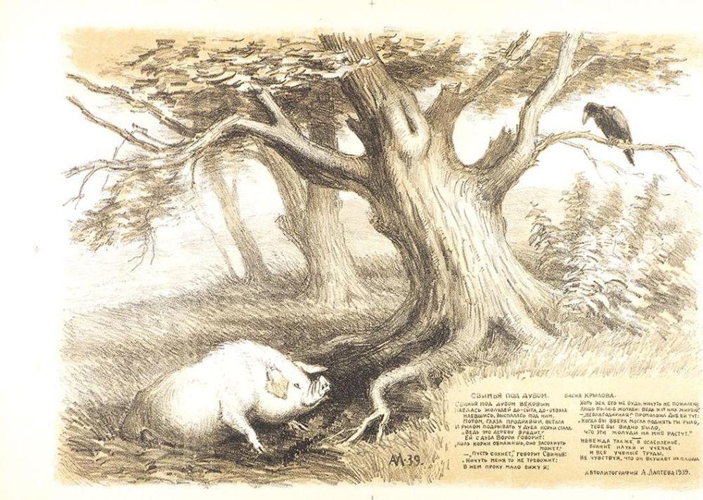 Картинки из басни крылова свинья под дубом