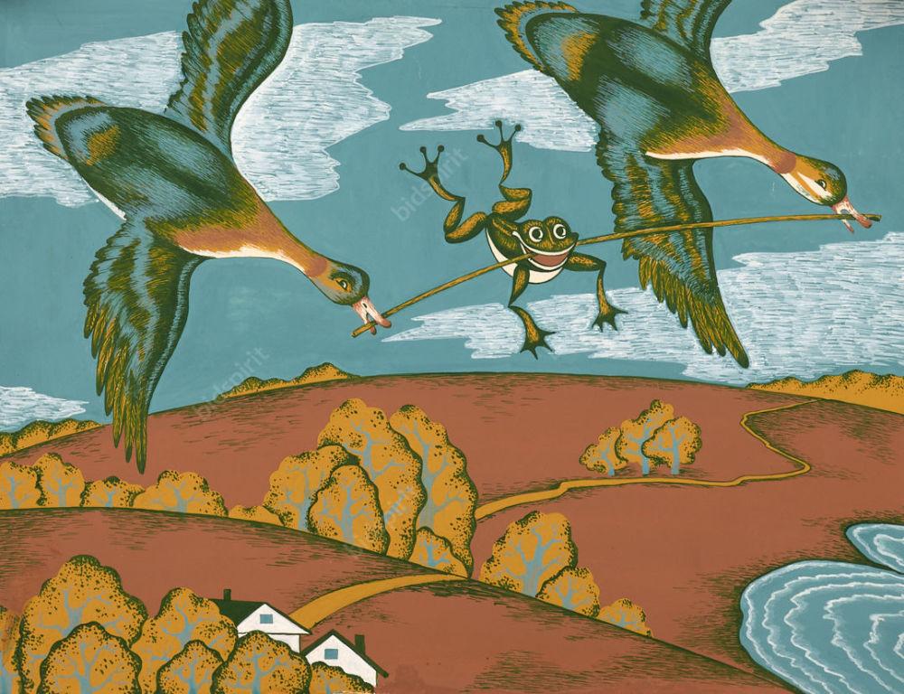 Иллюстрации к книге лягушка путешественница